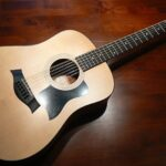Best 12 String Acoustic-Electric Guitars